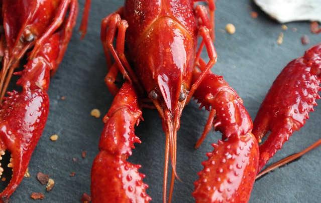 小龙虾虾线怎么挑?