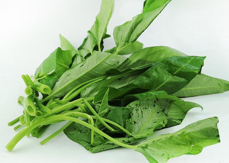 促进肠蠕动的食物有哪些?