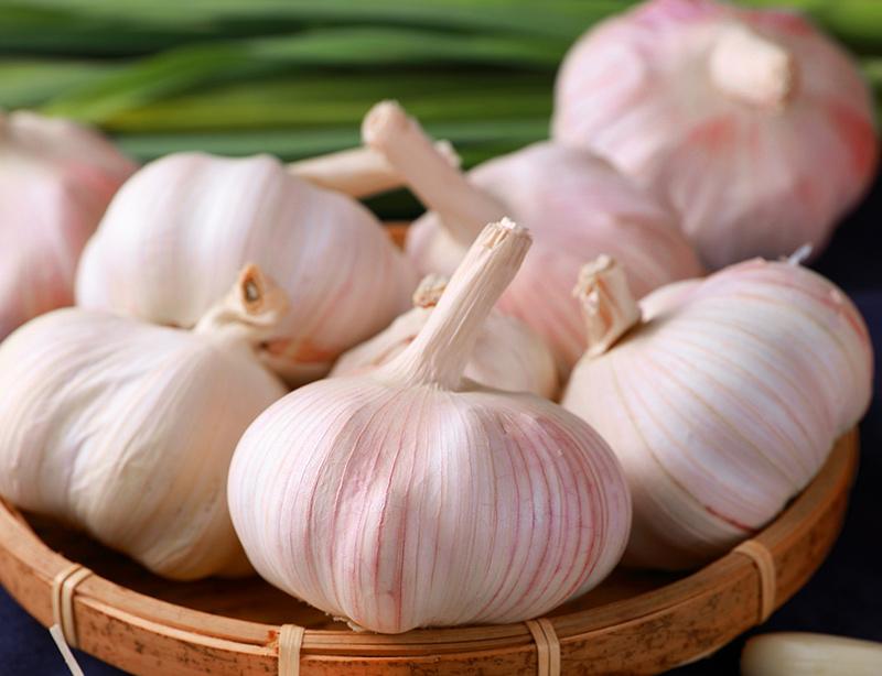 吃大蒜可以杀死幽门螺杆菌吗?